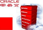 ORACLE-升级SPARC服务器实现数据中心变革-1208