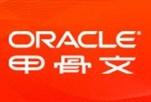 Oracle系统政府行业网络研讨会-1031
